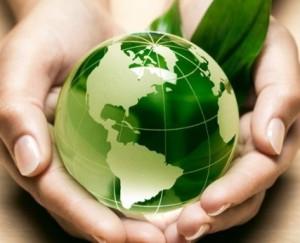 Экологическое сопровождение предприятия
